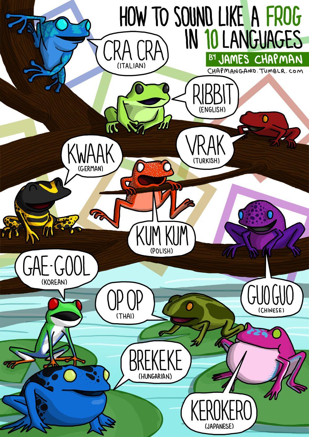 Come fa la rana