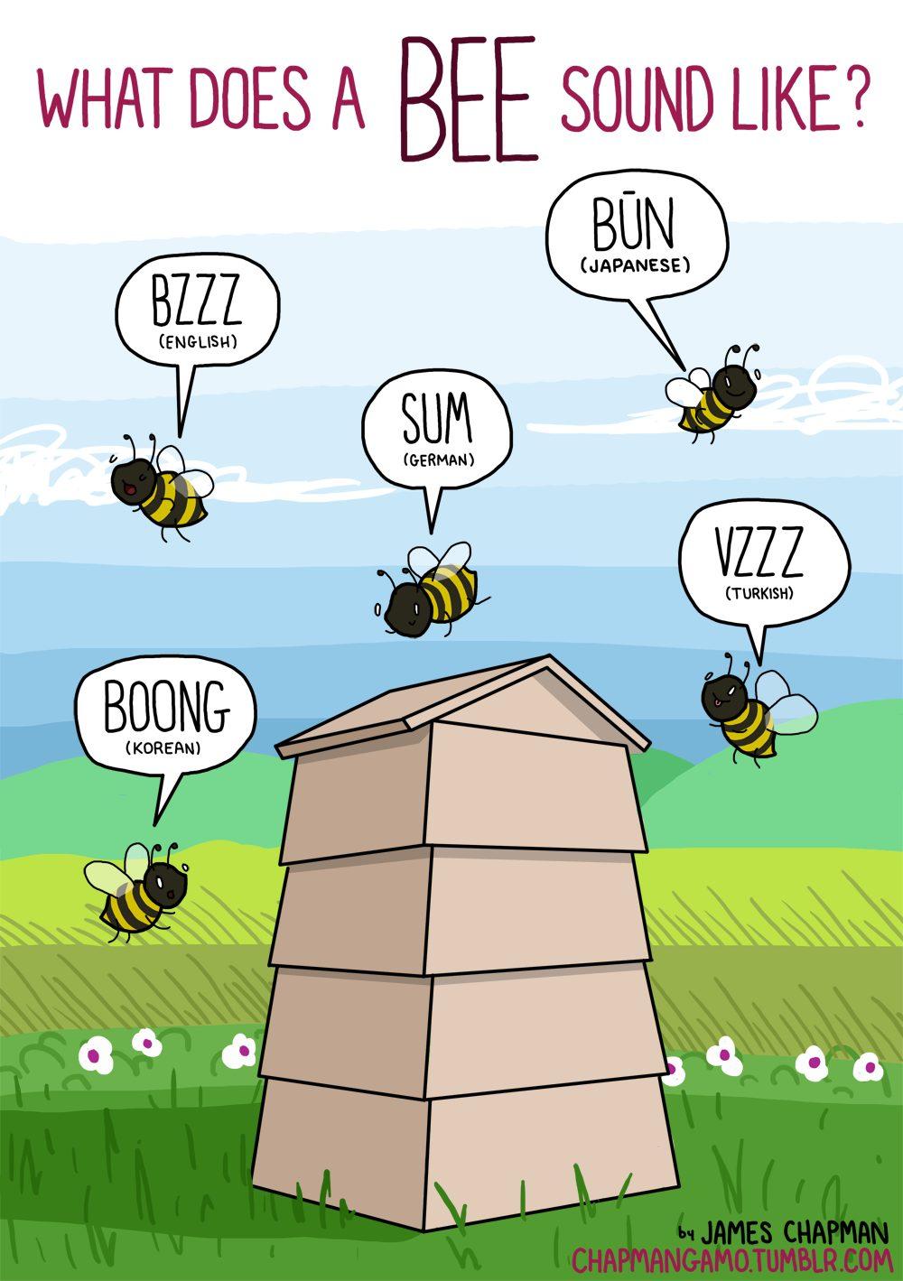 Come fa l'ape