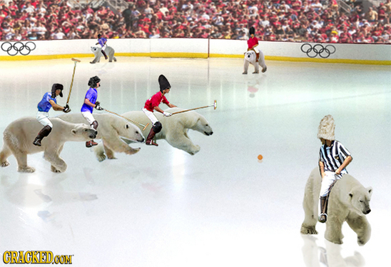 Polo su orsi polari - olimpiadi invernali